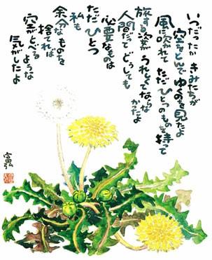 星野富弘の画像 p1_30